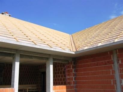 Les za strehe