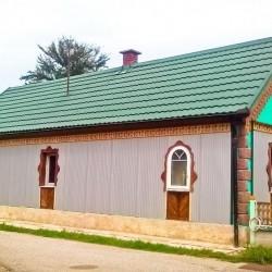 mini t hosekra streha