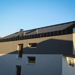 T4 na strehi